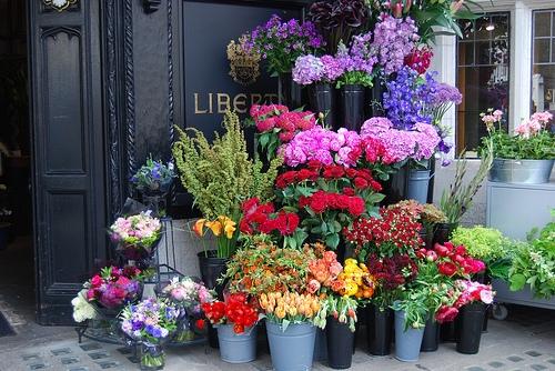 Przepiękna kwiaciarnia, aż chce się tam być <3
