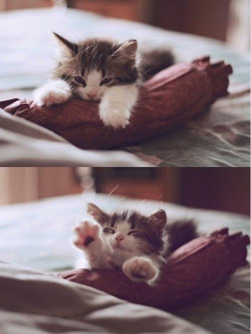 Tak ciężko jest rano wstać
