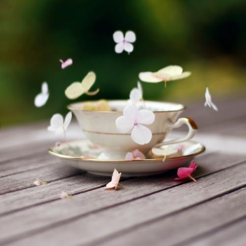Wiosenna herbata