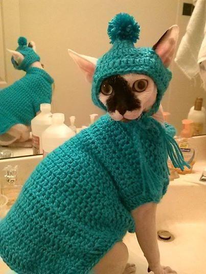 A dziś założę swój ulubiony sweter